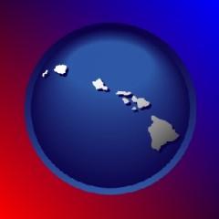 hawaii shape icon
