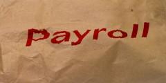 brown payroll bag