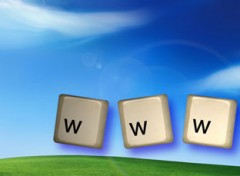 www - world wide web consulting